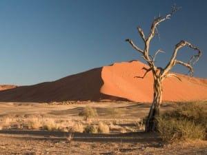 Desert-B7X-800x600