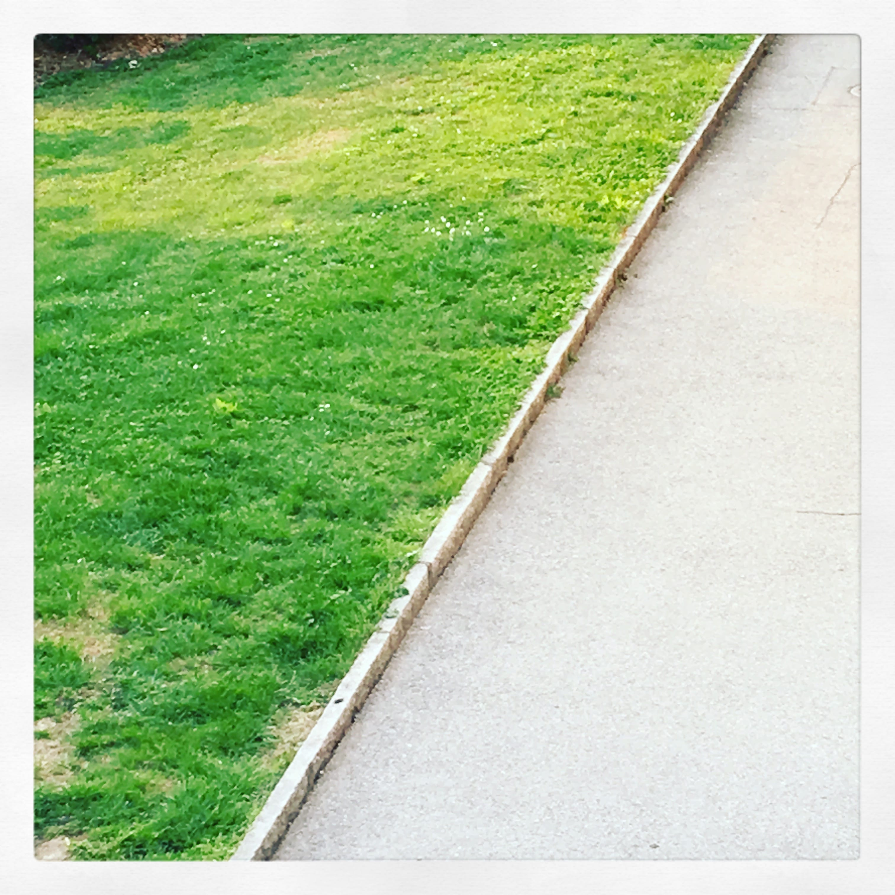Prato Rigenerante Come Funziona aprile – andrea fazioli